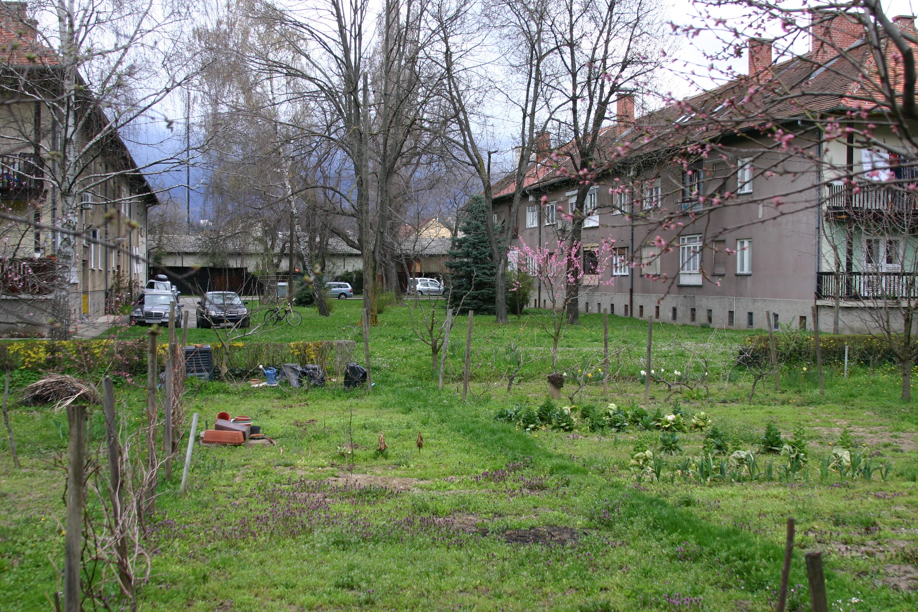 Cijeli kvart kao botanički vrt/radionica za osnovnoškolce/Udruga Zeleni klik!